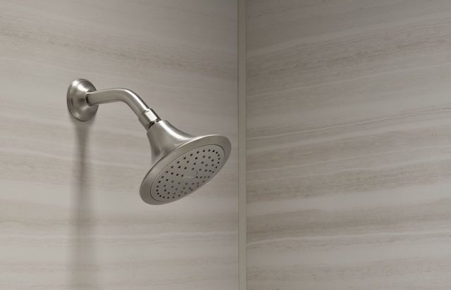 brushed nickel showerhead